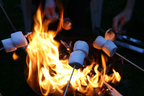 Marshmallows By The Fire Pictures Photos And Images For