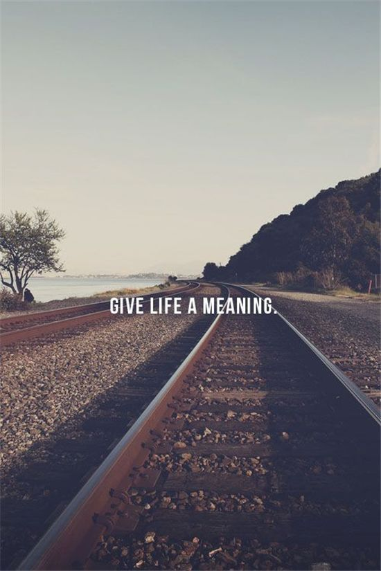 Give Life A Meaning Quote