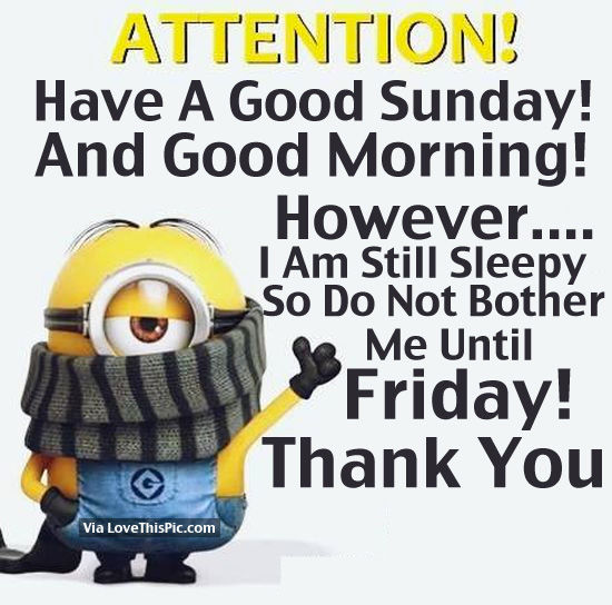 Attention! Have A Good Sunday And Good Morning! Pictures, Photos, and Images ...