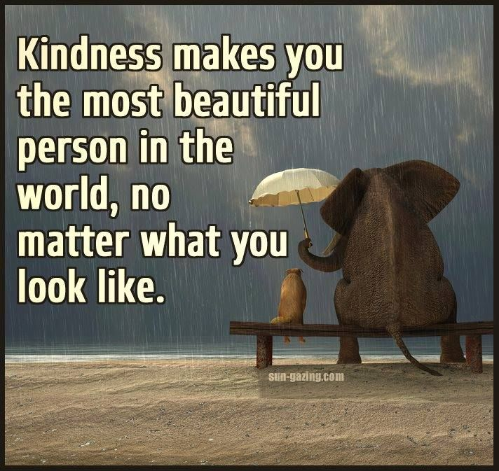 Kindness Makes You Beautiful
