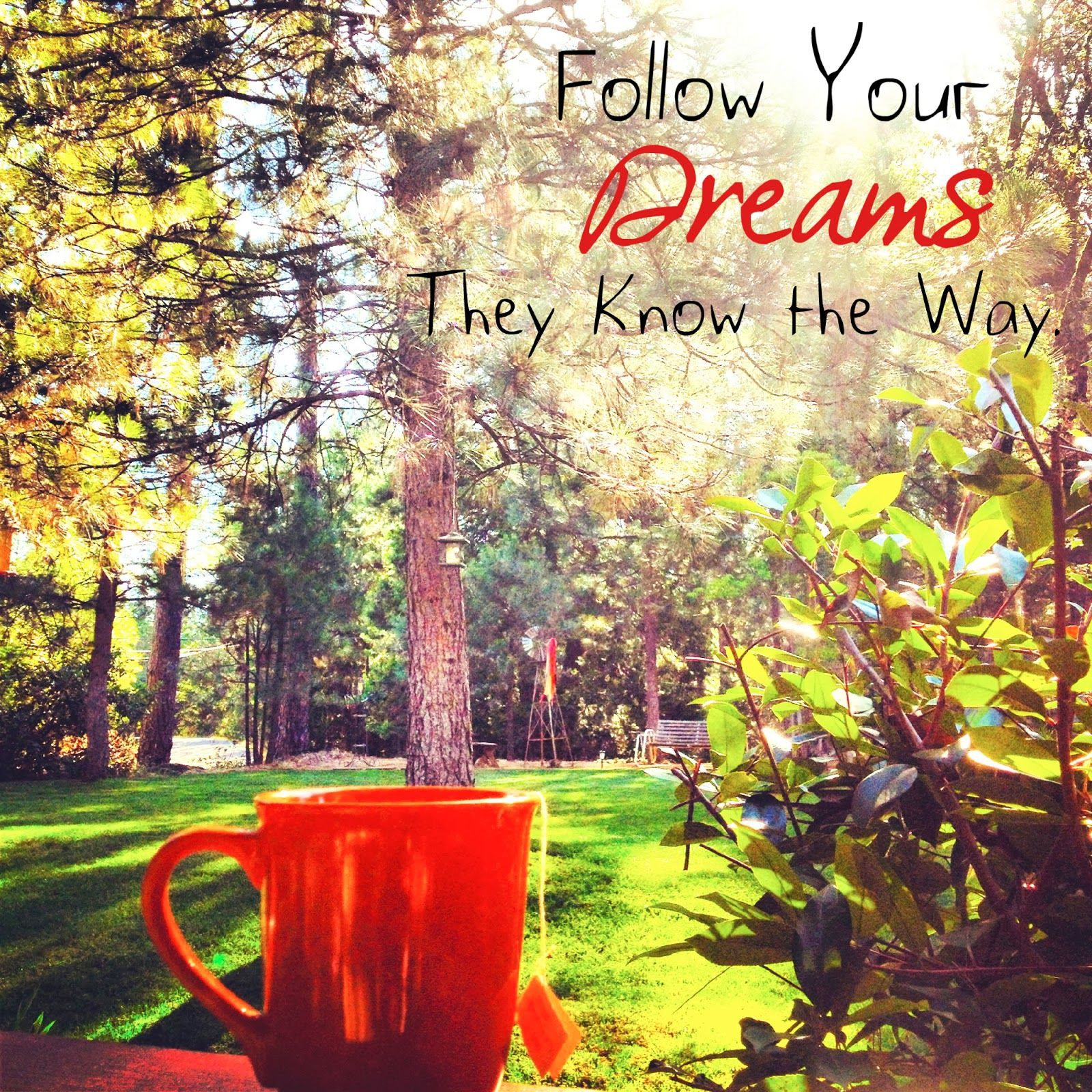 Dream Of Log Home Do Your Homework: Follow Your Dreams, They Know The Way Pictures, Photos