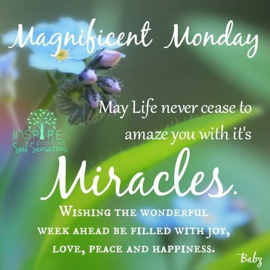 Image result for Wishing You a Wonderful Week