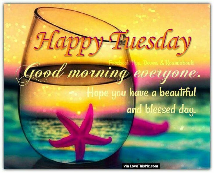 231044-Happy-Tuesday-Good-Morning-Everyone.jpg