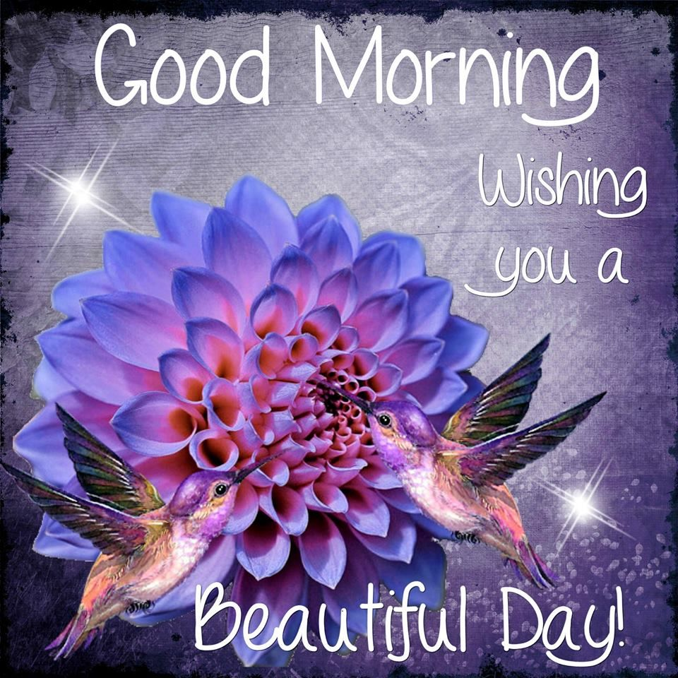 Beautiful Day Quotes Good Morning Wishing You A Beautiful Day Quote Pictures, Photos  Beautiful Day Quotes