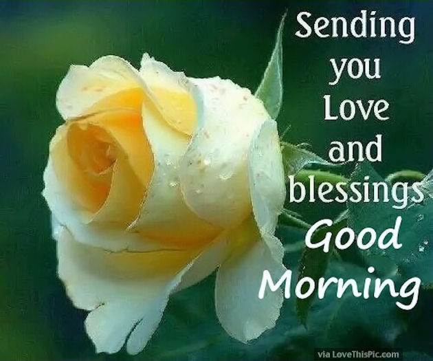 Good Morning Love And Hugs : Sending you love and blessings good morning pictures