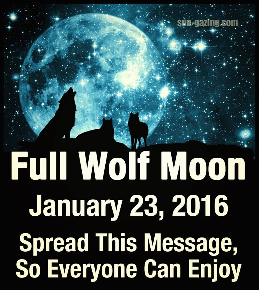 Quotes January Full Wolf Moon January 23 2016 Pictures Photos And Images For