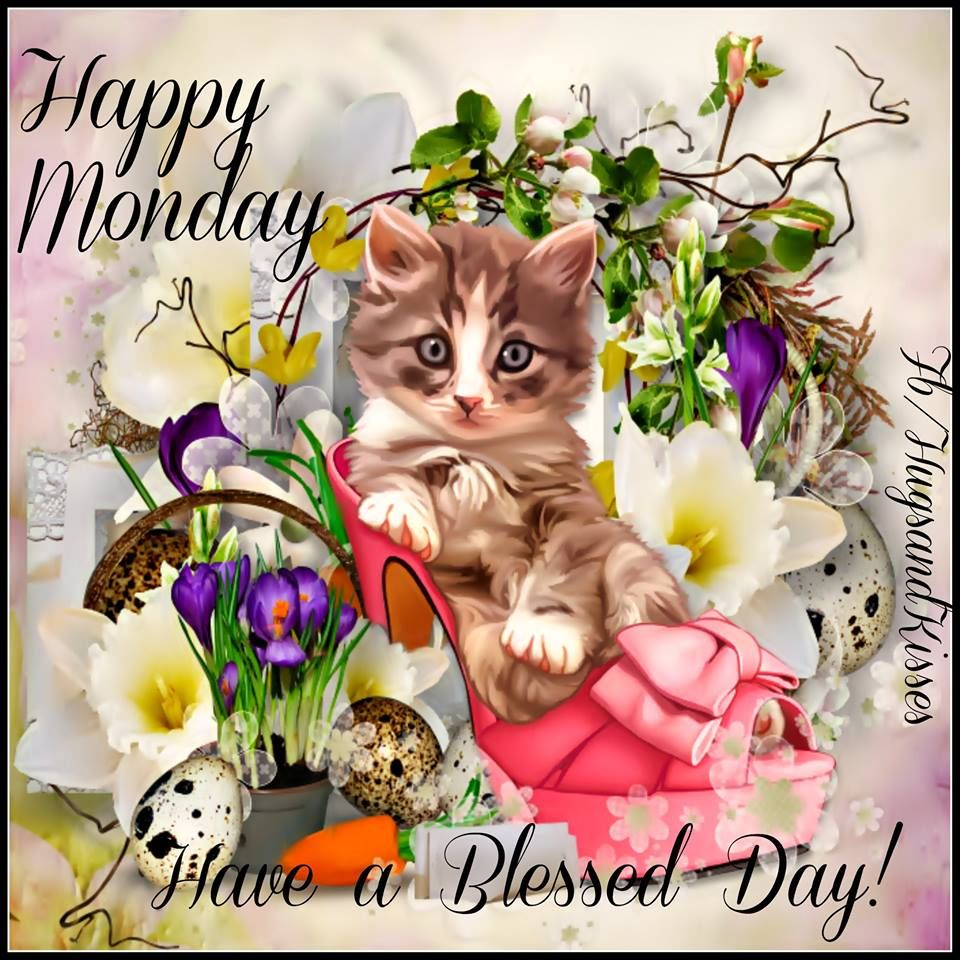 Happy Monday Have A Blessed Day Pictures Photos And Images For