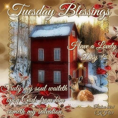 Tuesday Blessings Trust God Pictures, Photos, and Images