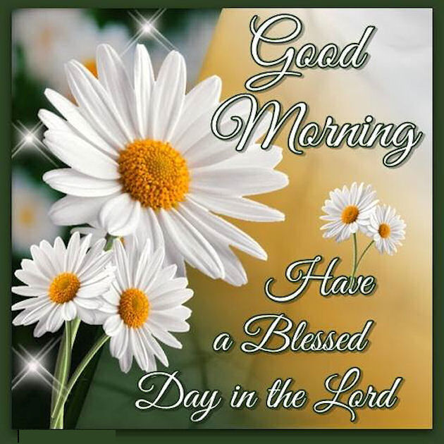 Blessed Day Quotes Good Morning Have A Blessed Day In The Lord Image Quote Pictures  Blessed Day Quotes