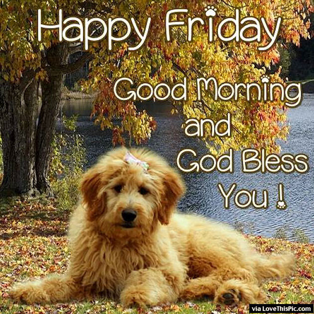 Happy Friday Good Morning God Bless You Pictures, Photos