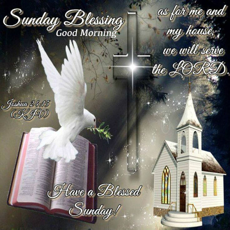 Sunday Blessings Good Morning Have A Blessed Sunday