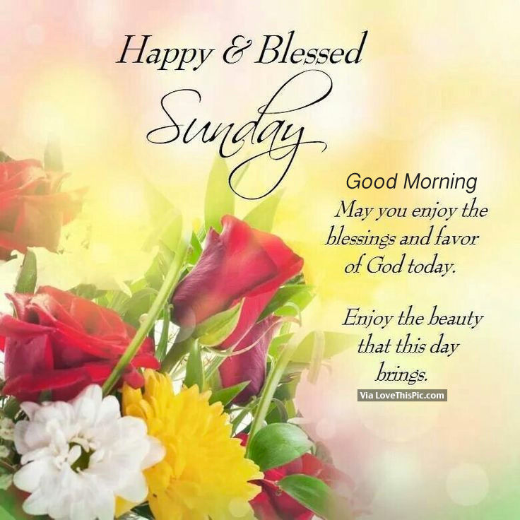 Good Morning And Happy Sunday Love Message : Happy blessed sunday good morning pictures photos and