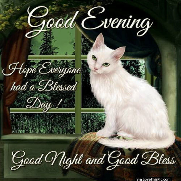Good Evening Hope Everyone Had A Blessed Day Pictures ...