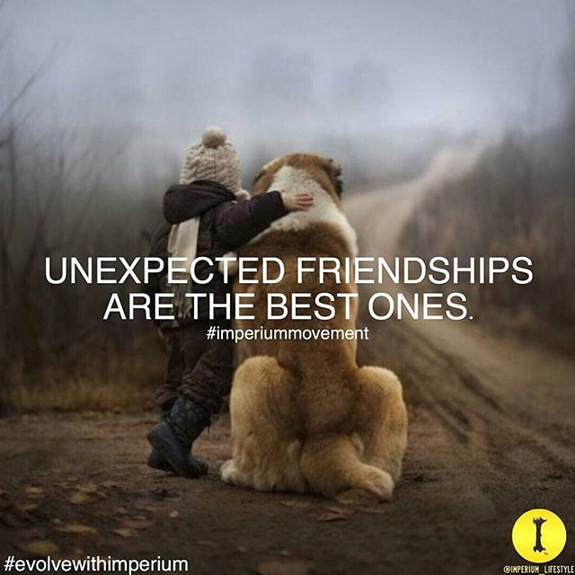 Unexpected Friendships Are The Best One Pictures Photos And Images Inspiration Unexpected Friendahip Quotes