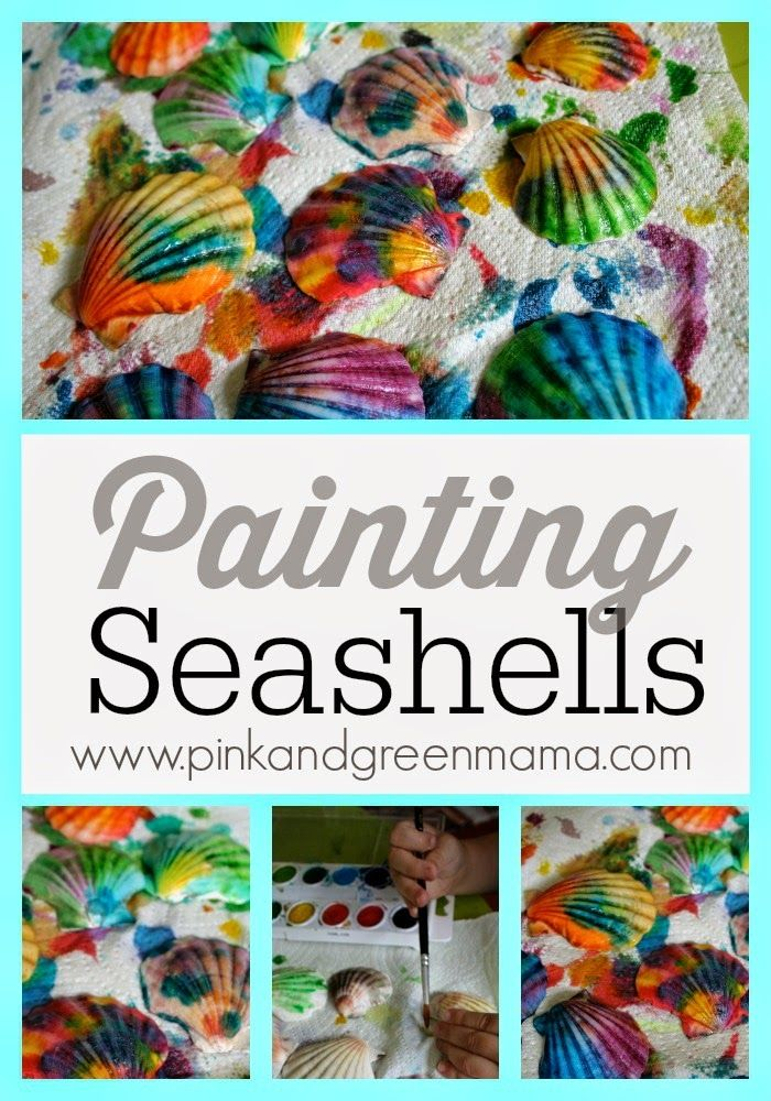 painting seashells pictures photos and images for