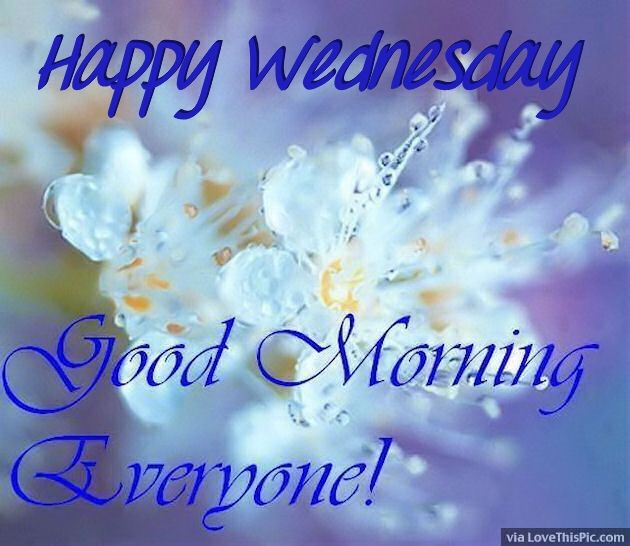 Good Morning Good Morning Everyone In The News : Happy wednesday good morning everyone pictures photos