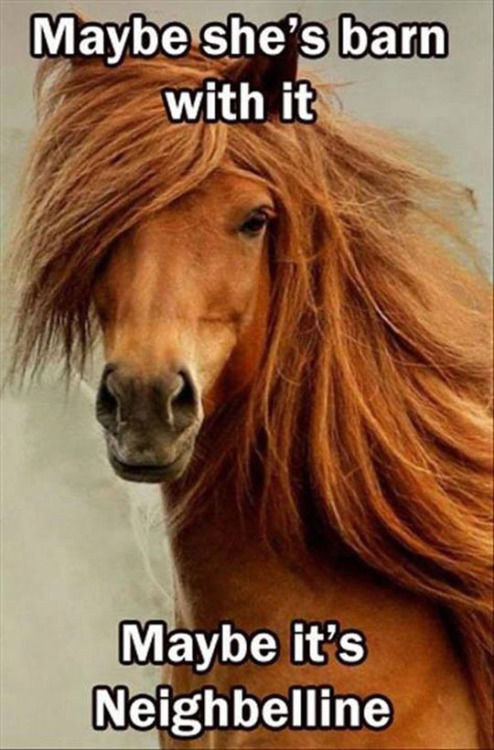 234515 Maybe She s Barn With It Maybe It s Neighbelline maybe she's barn with it maybe it's neighbelline pictures, photos