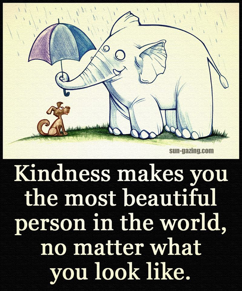 Kindness Makes You The Most Beautiful Person In The World No ...