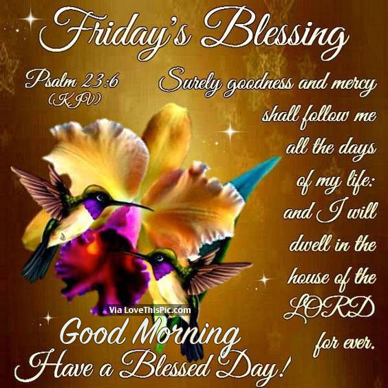 Good Morning Blessings Friday : Friday s blessing good morning have a blessed day