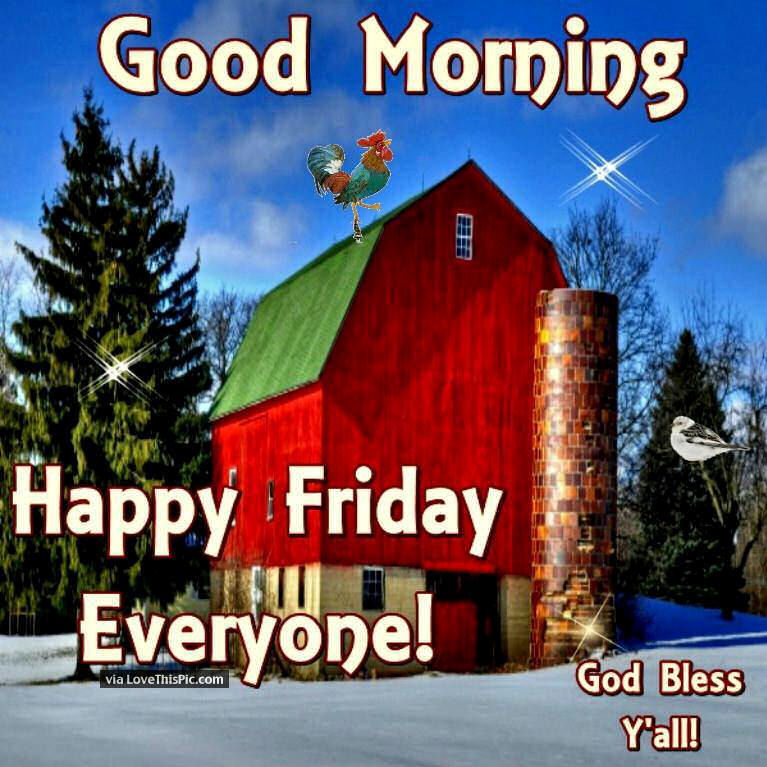 good morning happy friday everyone pictures photos and images for