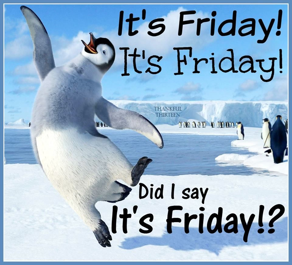 Its Friday Funny Quotations: I Am So Excited Its Friday Pictures, Photos, And Images