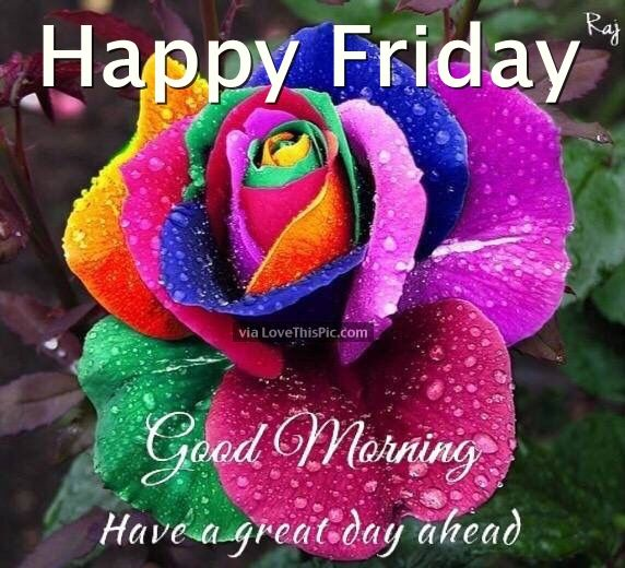 Happy Friday Good Morning Have A Great Day Ahead Pictures Photos