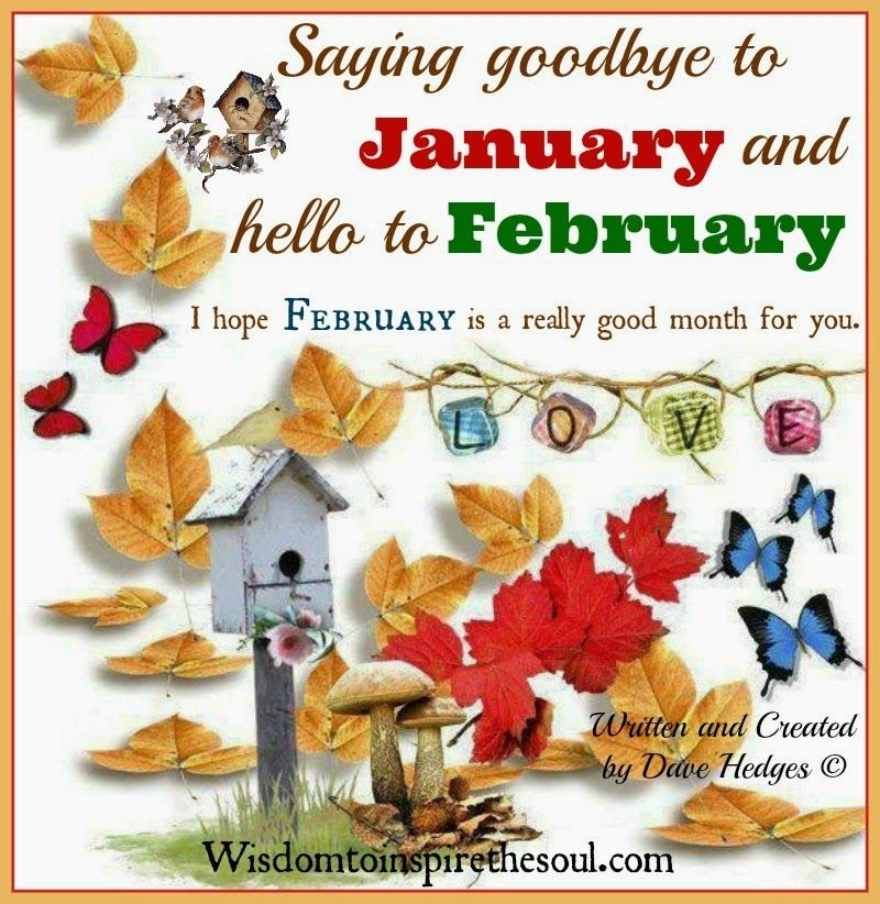 Saying Goodbye To January And Hello To February Pictures ...