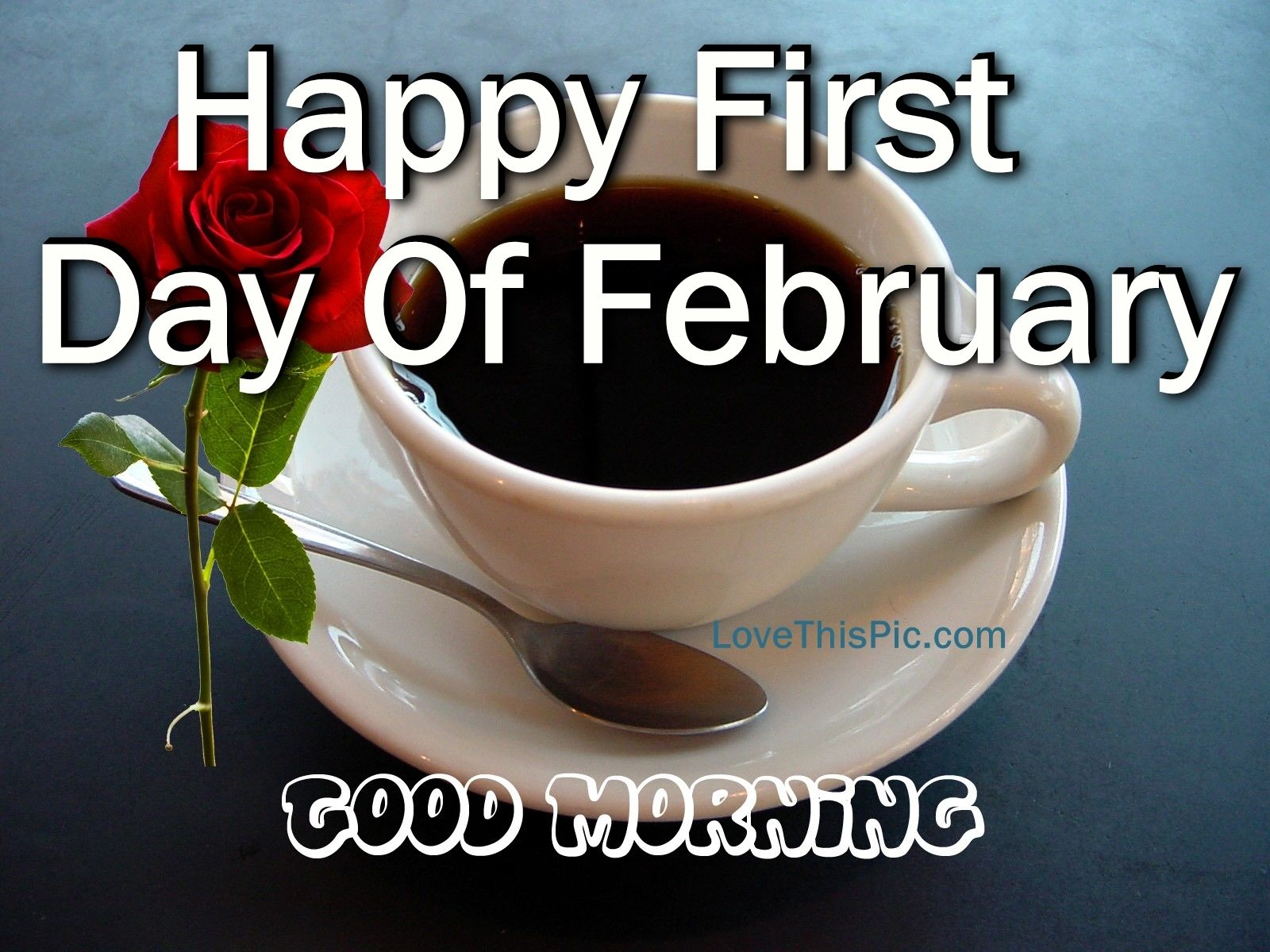 Happy First Day Of February Good Morning Pictures, Photos, and Images ...