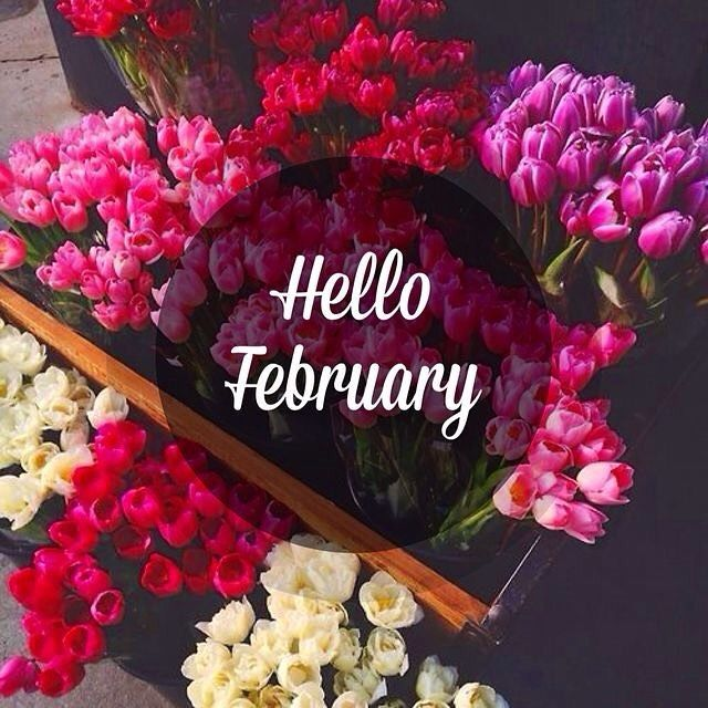 happy valentines day wallpapers with quotes - Hello February Flowers s and for