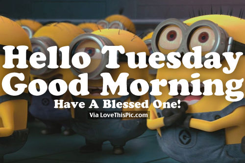 Hello Tuesday, Good Morning, Have A Blessed One! Pictures