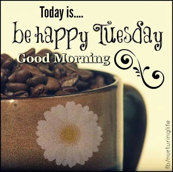 Good Morning My Love Happy Tuesday : Good morning tuesday quotes for friends