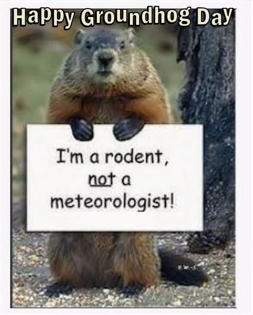 Happy Groundhog Day Funny Quote Pictures, Photos, And
