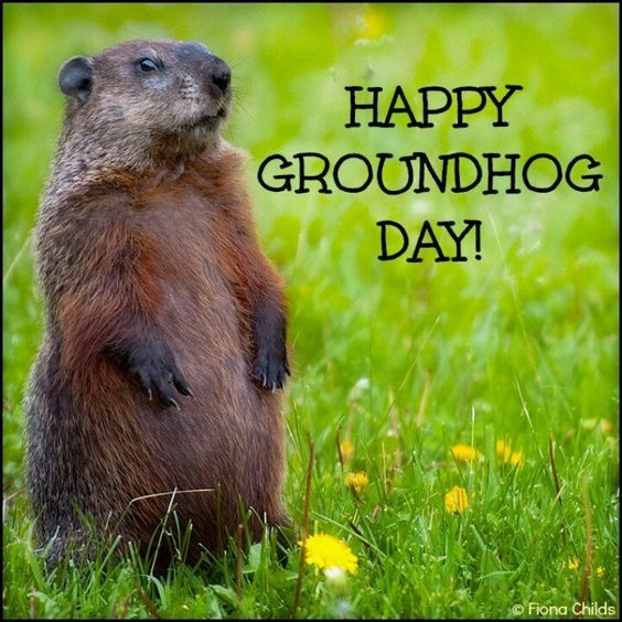Happy Groundhog Day Image Quote Pictures Photos And