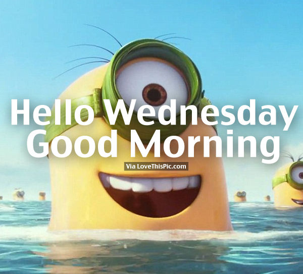 Hello Wednesday, Good Morning Swimming Minion Quote Pictures, Photos, and Ima...