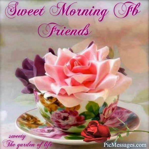 Sweet morning fb friends pictures photos and images for facebook sweet morning fb friends m4hsunfo