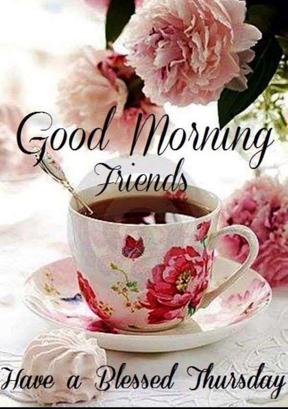 Good morning friends have a blessed thursday pictures photos and