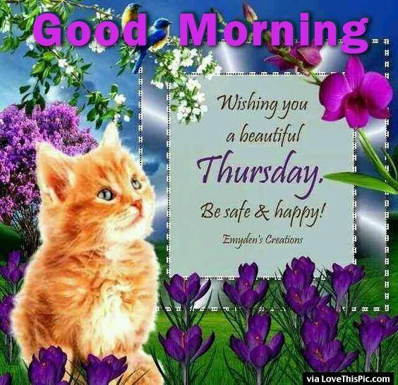 Good Morning Beautiful Thursday Images : Good morning wishing you a beautiful thursday pictures