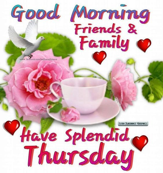 Good Morning Family And Friends Images : Good morning family and friends have a splendid thursday