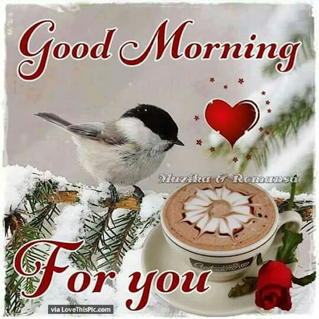 good morning for you