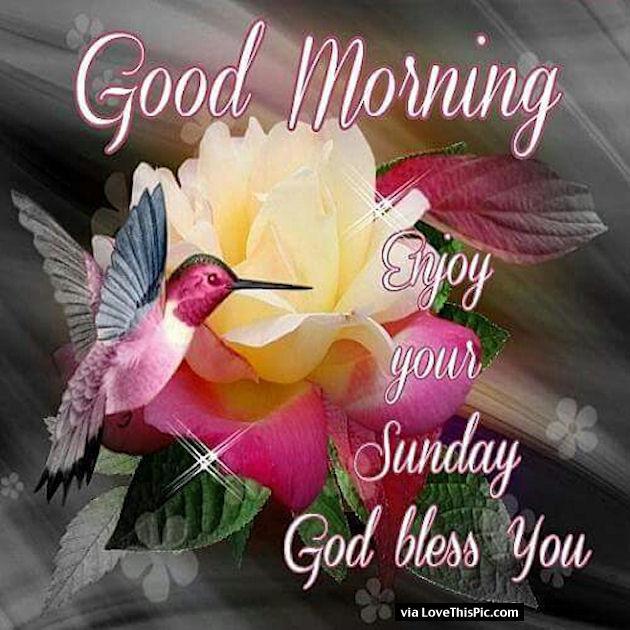 Good Morning Sunday God Photos : Funny sunday morning quotes