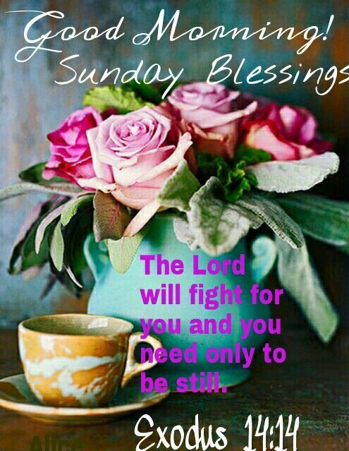 Good Morning Sunday Flowers Images : Good morning sunday blessings religious quote pictures