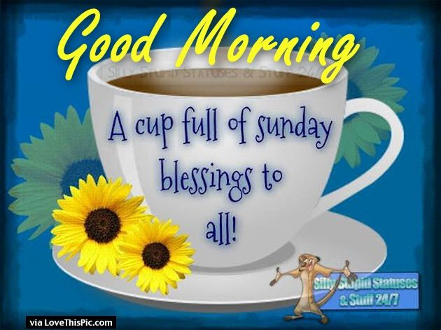 Good Morning A Cup Full Of Sunday Blessings Pictures