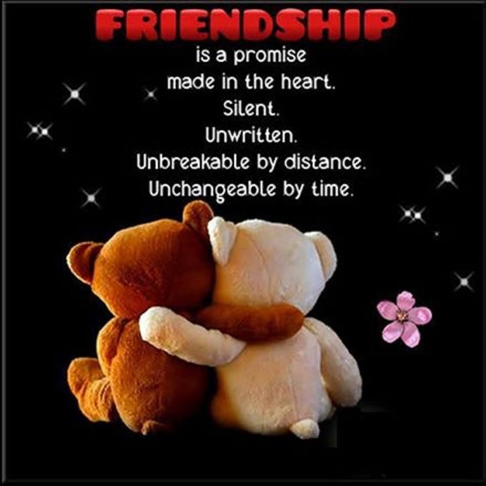 friendship is a promise made in the heart pictures photos and  friendship is a promise made in the heart
