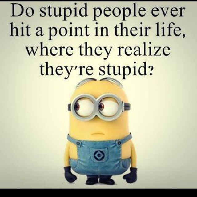 Do Stupid People Ever Hit A Point In Their Life Where They