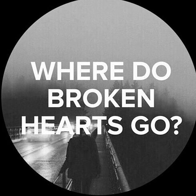 67 Best Trending News Viral Videos Images On Pinterest: Where Do Broken Hearts Go? Pictures, Photos, And Images