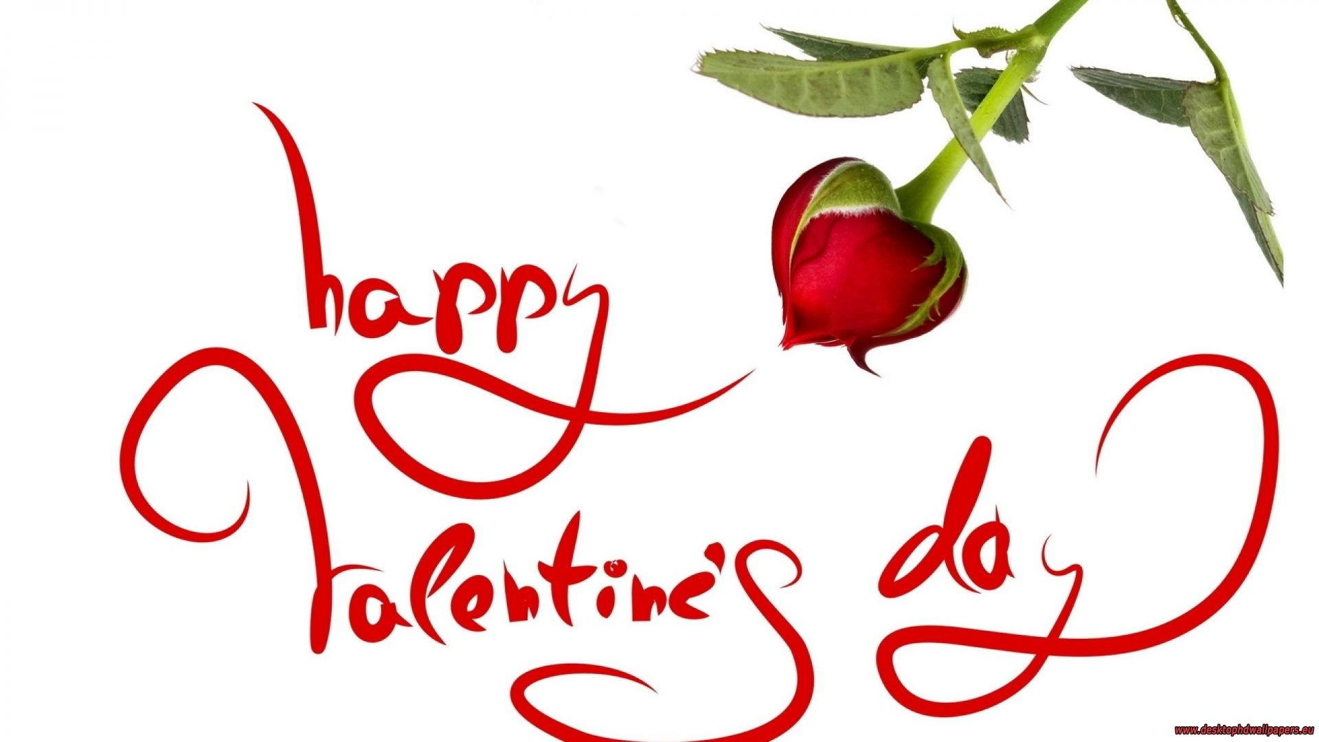 Happy Valentine S Day Red Rose Graphic Pictures Photos And Images