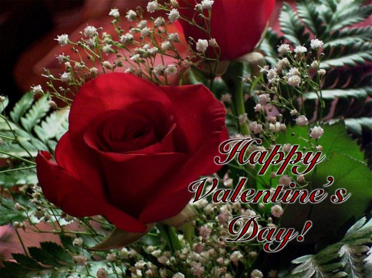 Happy Valentine's Day Rose Graphic Pictures, Photos, and ...