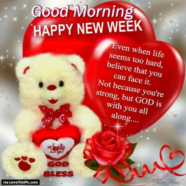 good morning happy new week pictures photos and images for