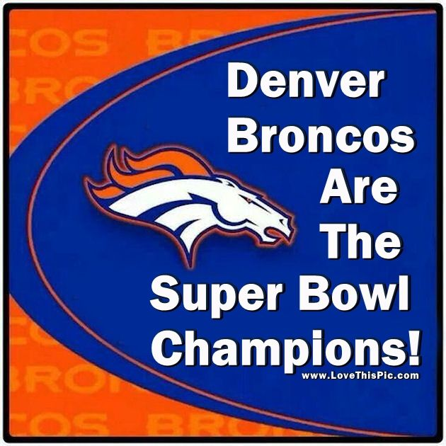 Denver News Sunday: Denver Broncos Are The Super Bowl Champions Pictures