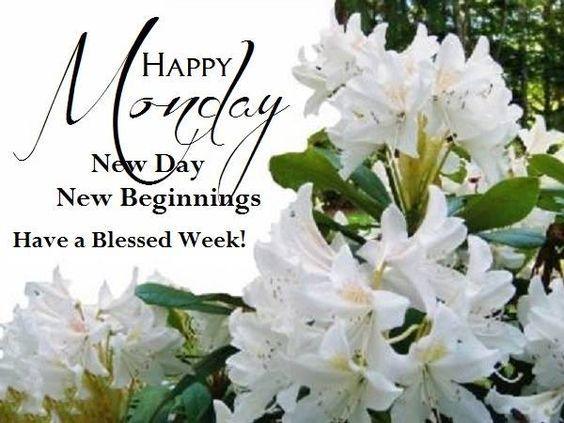 Happy Monday New Day Beginnings Have A Blessed Week